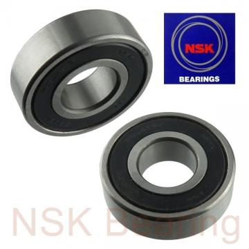 NSK 1301 self aligning ball bearings